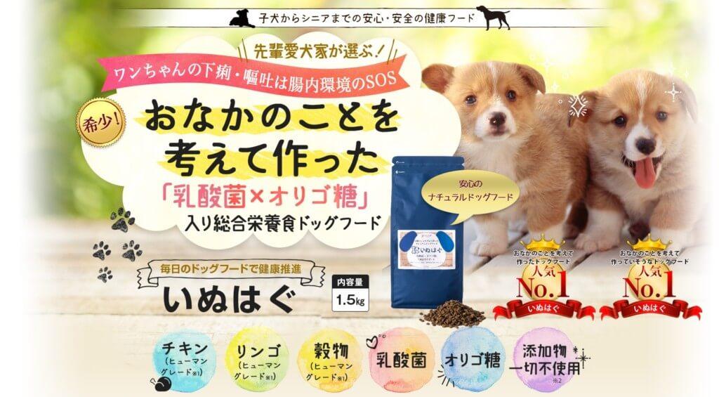 いぬはぐドッグフードの評価は下痢や嘔吐する犬のおなかのことを考えて作ったドッグフード